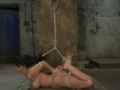 Hot Kayme Kai gets hog tied and toyed by the brush master