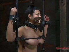 In a tizzy beauty made to crook to stud horny demands